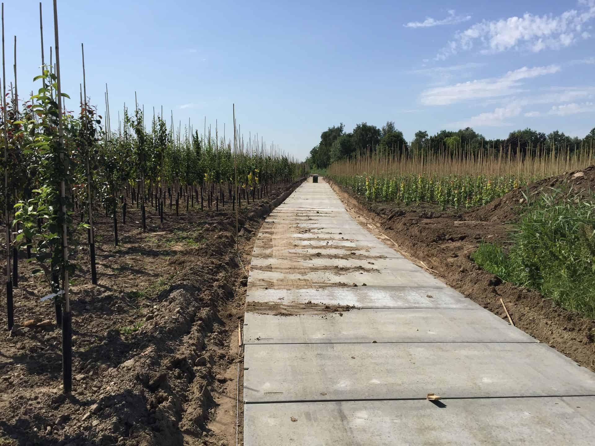 Project Opheusden   Kavelpaden met betonplaten 300x120x.14   De Keij
