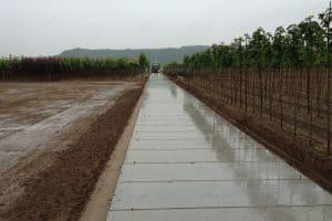 Betonpad kwekerij | De Keij Betonplaten
