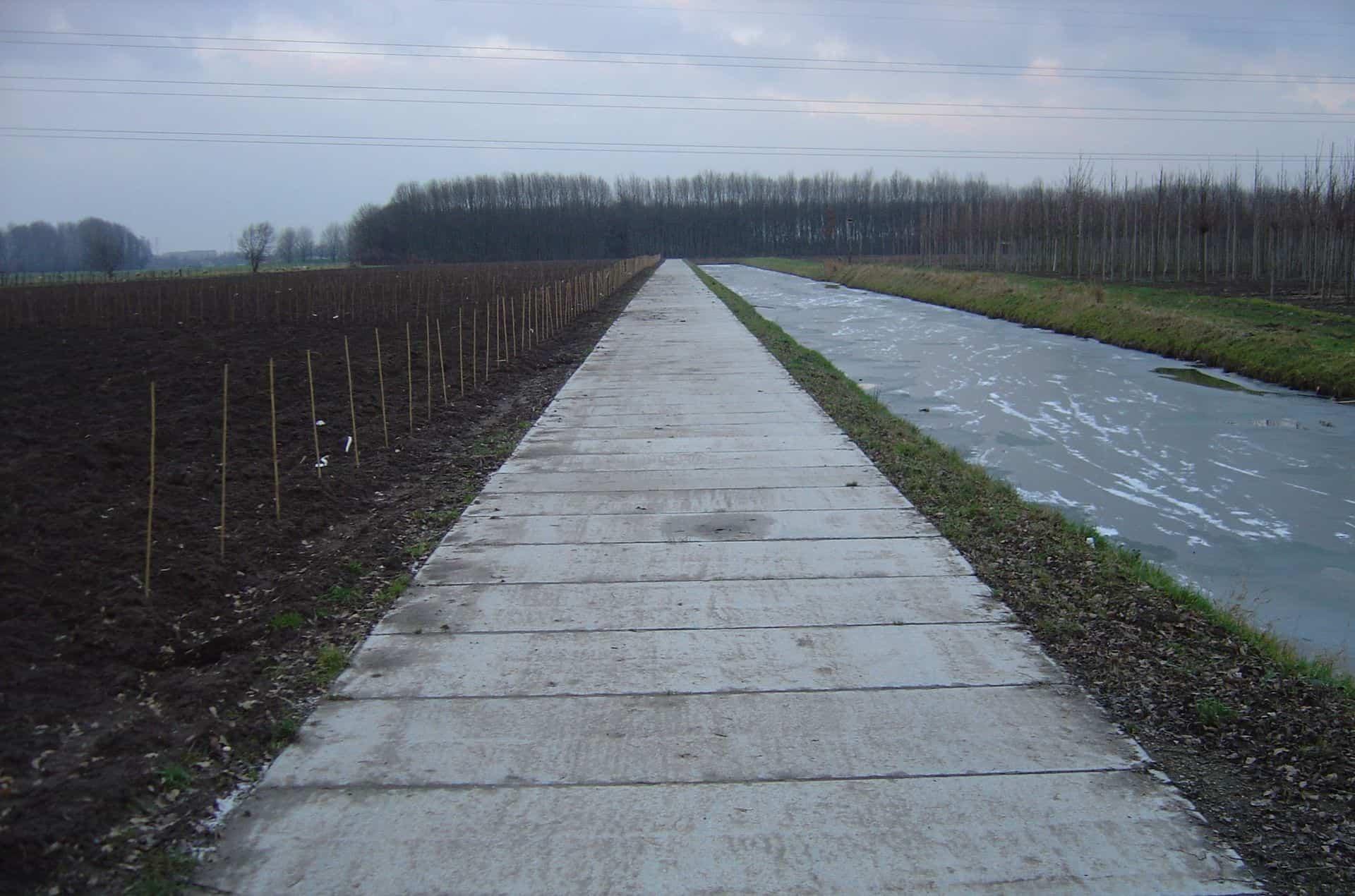 Kavelpad met betonplaten 300x120cm | Project diverse kwekerijen