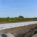 Kavelpad kwekerij Lienden   Betonplaten 200x200cm