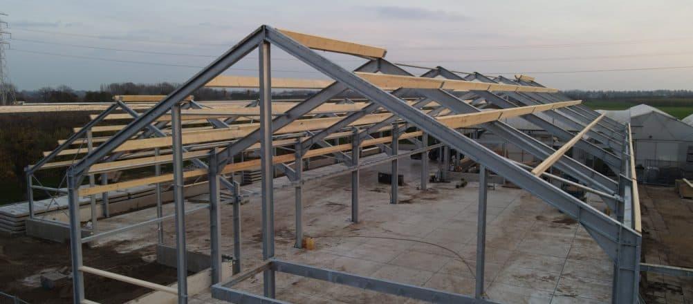 Günstige Betonplatten | Betonplattenbelag Gartencenter | De Keij